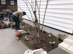 植栽工事、第3回が始まりました。
